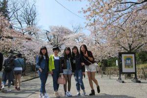 Cuộc sống Nhật Bản qua lăng kính du học sinh Việt